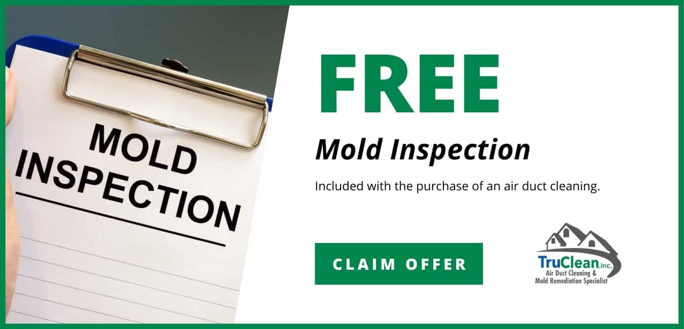 Free Mold Inspection Coupon TruClean Memphis