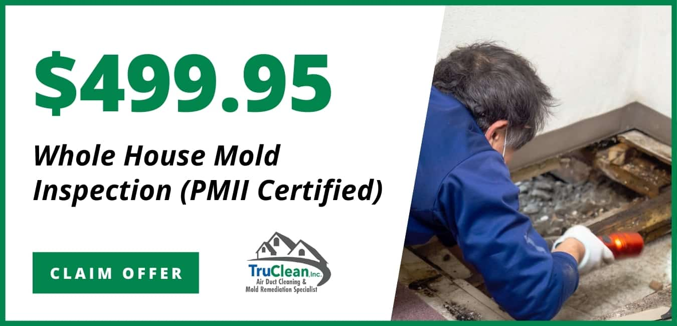 House Mold Inspection Coupon TruClean Memphis